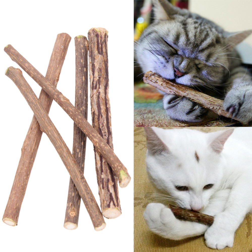 5/10/15/20pcs Pure Natural Catnip Pet Cat Toy Molar Toothpaste Branch Cleaning Teeth Silvervine Cat Snacks Sticks Pet Supplies