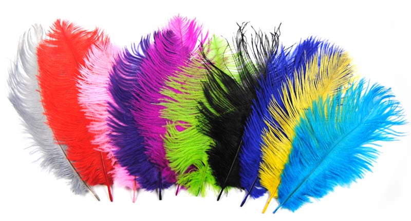 10 UNIDS Múltiples Colores de Avestruz Feather Fly Tying Material Haciendo Streamer Bugs Salmon Ninfa Cebo de Pesca