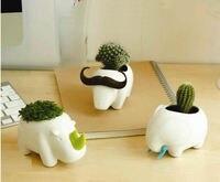 Mini Cute Ceramic Pots Simple Animal Desktop Flowerpot Creative Desktop Storage Personalized Office Decoration Elephant