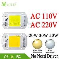LED COB Lamp Chip 20W 30W 50W 220V 110V Input Cold White Warm White Smart IC