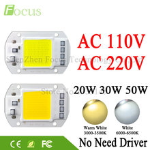 LED COB Lamp Chip 20W 30W 50W 220V 110V Input Cold White Warm White Smart IC Driver For DIY 20 30 50 W Watt Floodlight Spotlight(China)