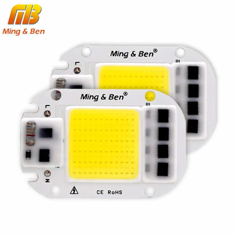 Светодиодный чип COB 20 Вт, 30 Вт, 50 Вт, 70 Вт, 100 Вт, 150 Вт, переменный ток, 220 В, 110 В, IP65 Smart IC, подходит для DIY, светодиодный прожектор, холодный белый, теплый белый