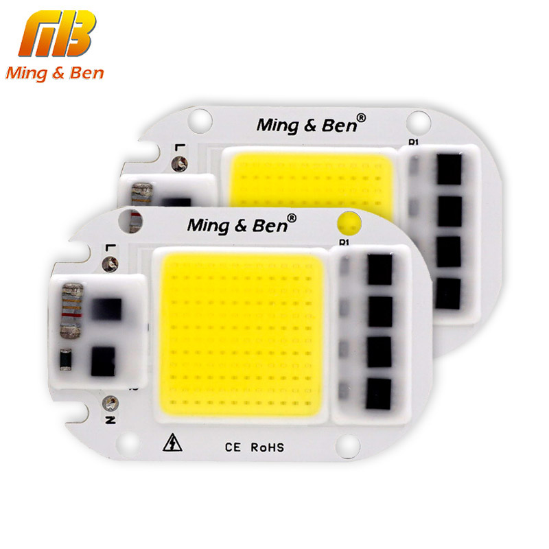 LED COB Lamp Chip 20W 30W 50W 70W 100W 150W AC 220V 110V IP65 Smart IC Fit For DIY Outdoor LED Floodlight Cold White Warm White