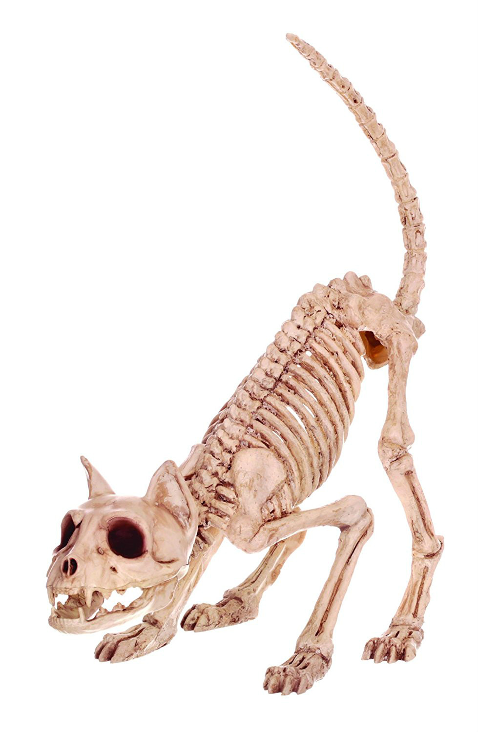 Fantasy Bone Skeleton Cat Animal Lil' Kitty Bonez Skeleton Bones for Horror Halloween Decoration