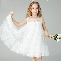 Girl Dresses Princess dress