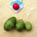 3pcs(1set) Natural Jade Egg for Kegel Exercise Pelvic Floor Muscles Vaginal Exercise Yoni Egg Ben Wa Ball Free Shipping