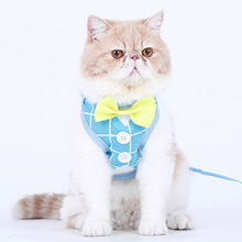Harness Cat Rope Vest Traction Elegant Collar Led Kitten Harnesses Katten Harnas Cats Decoration Terno Gato Pet Products 90D1801