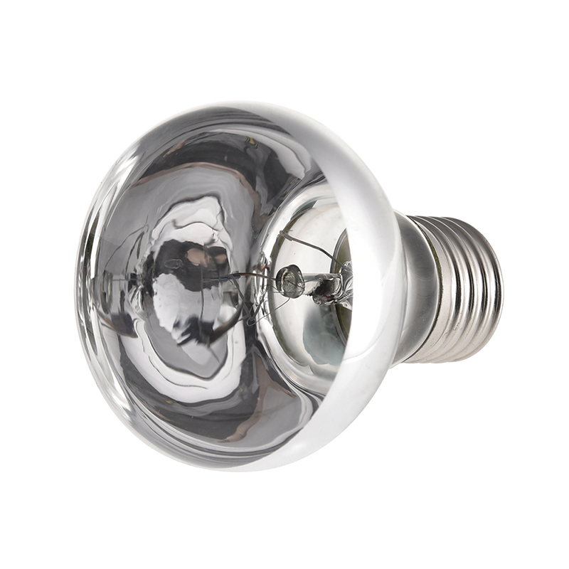 25/50/75/100w Mini Reptile Daylight Lamp Thermal Light Lamp For Snakes Lizards Tortoise E27 Reptiles Amphibian Animal Lighting #6