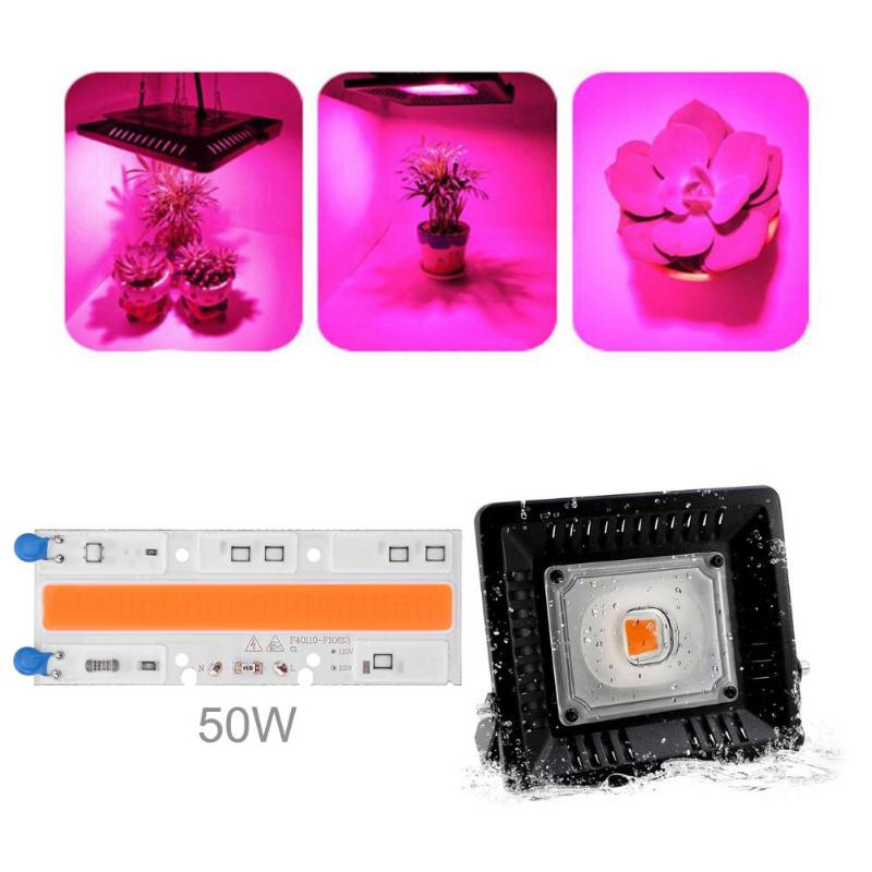 50W Full Spectrum Indoor Plant Growth Lamp AC 220V/110V COB LED Grow Light Bead Chip Led Plant Lights Source