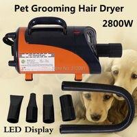 2800W High Power Pet Hair Dryer Blower Dog Pet Grooming Dryer Blower Heater, Pet Grooming Trockner+ 3 Nozzles
