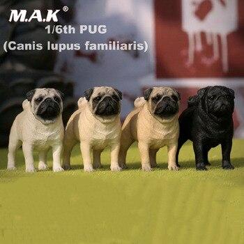4 renk Koleksiyonu 1/6 Ölçekli Reçine Hayvan Modeli 1/6 Pug Köpek Ekran şekilli kalıp için 12