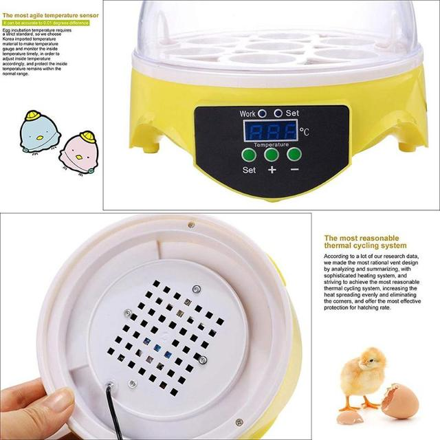 Mini 7 Egg Incubator Poultry Incubator Brooder Digital Temperature Farm Hatchery Egg Incubator Chicken Duck Bird Pigeon Hatcher 5