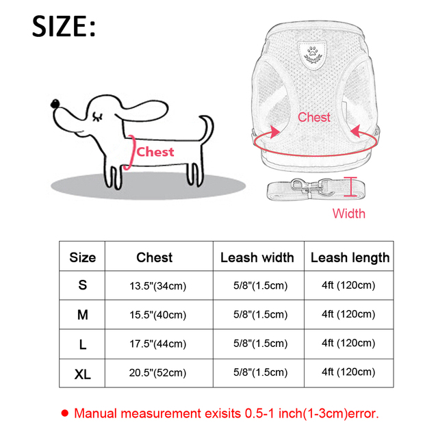 Small Pet Harness and Leash Set 3