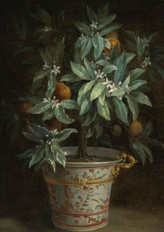 100% peinture à l'huile à la main sur toile de lin, l'oranger de Jean-Baptiste Oudry, ANIMAL, qualité du musée