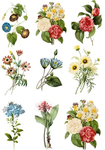 Vintage Hand Painted Flowers Heat Transfer Paper