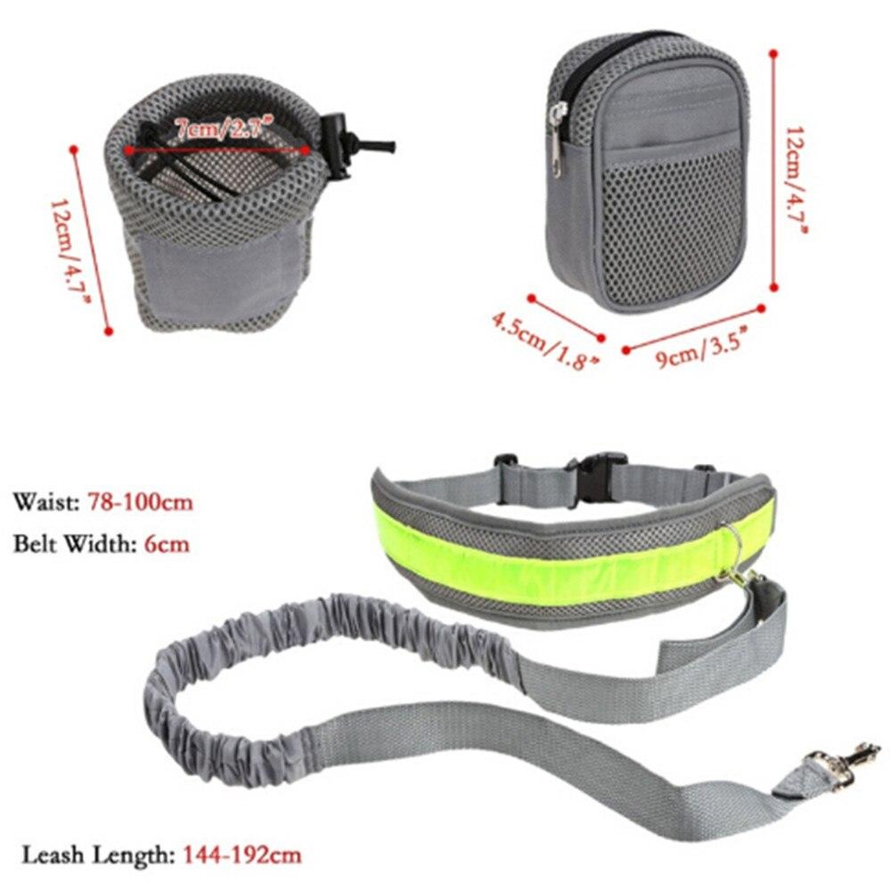 laisse de jogging avec ceinture