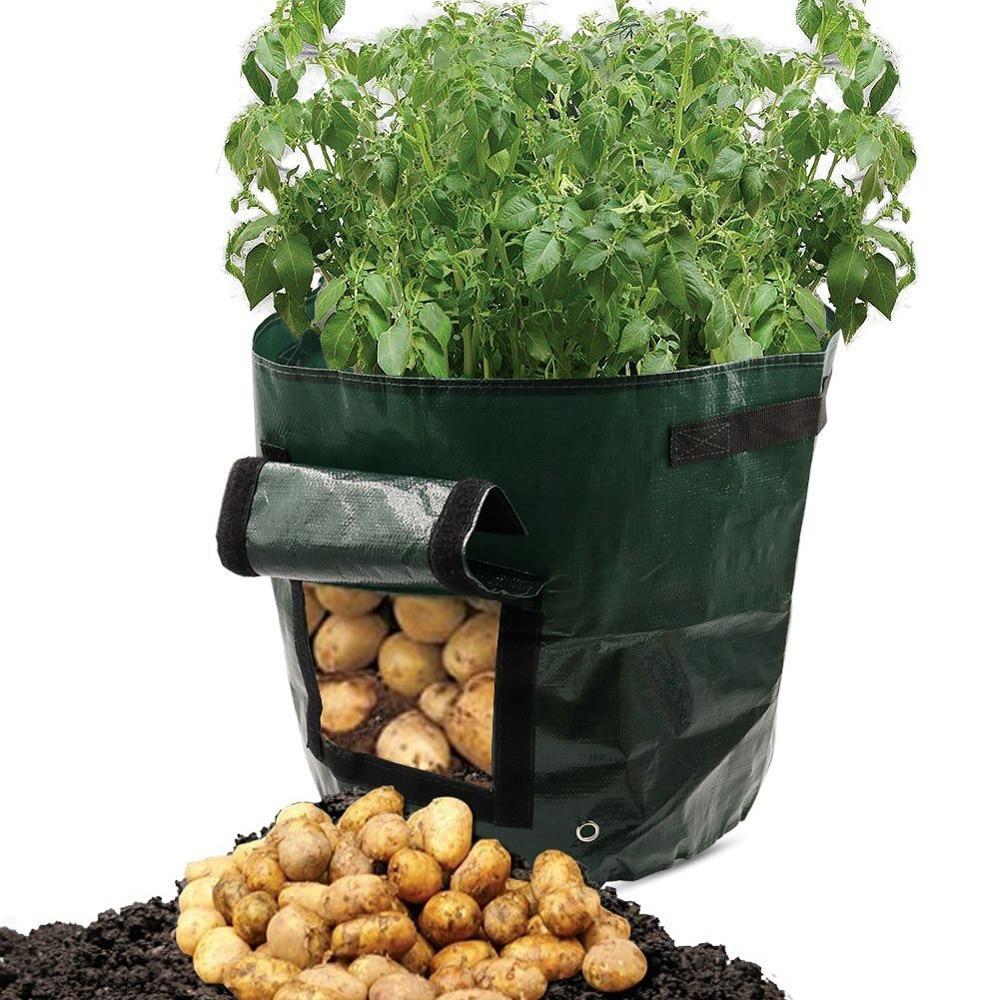 HTB1r2qEaOfrK1RjSspbq6A4pFXaH - DIY Potato Grow Planter PE Cloth Planting Container Bag