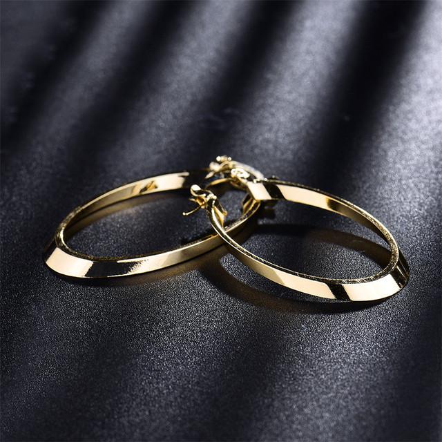 Charming Oval Hoop Earrings