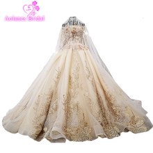 AOLANES 2018 Champagne Tulle Long Sleeves Bridal Gowns Boat Neck Cathedra Train Lace Up Vintage Wedding Dresses Vestido De Novia