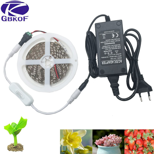 GBKOF 5050 LED Grow Lights DC 12V waterproof Growing LED Strip Plant Growth Light Set with Power Adapter and Switch 1M 2M 3M 5M