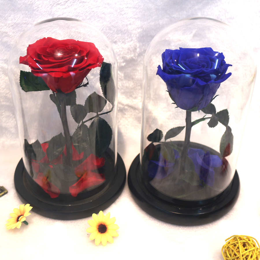 The Little Prince Glass Cover Preserved Rose Flower Immortal Red Roses for Valentine s Day Christmas