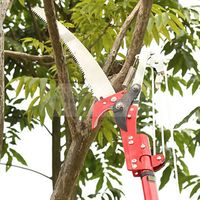 High quality two pulleys high altitude pruning shears sawing high shear gardening pruning tools(Scissors+saw+rope,without rod)