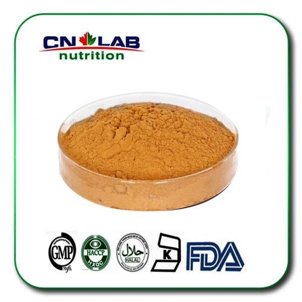 Anti-oxidante y Muy rica de vitamina orgánica Polvo de Espino amarillo Fruta/santa espina extraer 100g