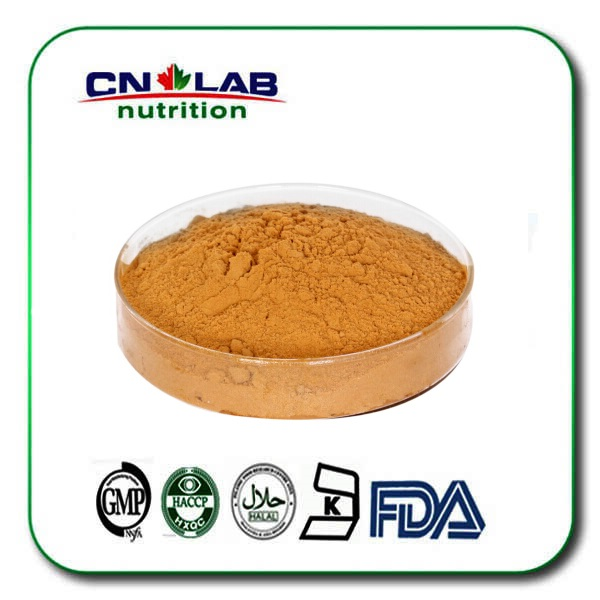 anti-oxidant and Very rich vitamin organic Sea Buckthorn Fruit Powder/holy thorn extract 100g 100% organic turmeric extract curcumin powder 95%