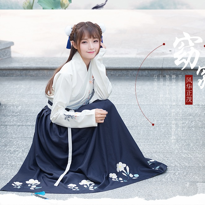 Chinese style women's hanfu costume Cantonese embroidered skirt + Jacket clothes Traditional Chinese Beautiful Dance Hanfu Dress