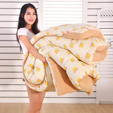 Comfortable quilt, give you warm night Queen Full Twin size