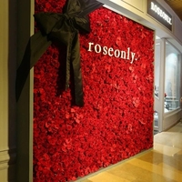 7.9ft x 7.9ft Red Flower backdrop Wedding Flower Wall Artifical Rose Stage Decoration