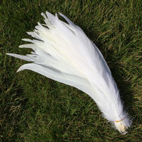 50PCS High Quality Pure White Rooster Coque Tail Feathers For Crafts wedding Decoration Costume Decoration Pheasant plumes