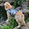 Fashion Life Vest 1