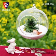 O.RoseLif Brand Hanging Glass Vase Terrarium Ball Globe Shape Clear Decoration Home Container Wedding Dercoration(China)