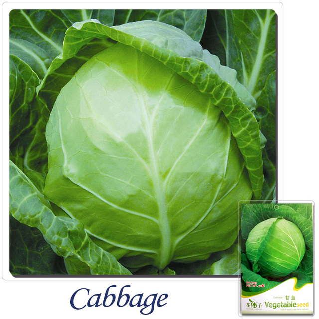 2 Get 1 Can Aculate Pack 55 Seeds Heirloom Non
