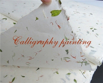 Chinese Ink WaterPainting Calligraphy Sumi-e Double Thick Xuan Rice Paper