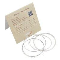 Mandolin String M100 Silver