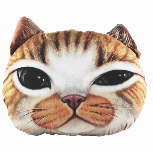 Огромный кот сон