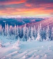 KIDNIUทิวทัศน์ถ่ายภาพฉากหลังฤดูหนาวหิมะไวนิล6x6ftอุปกรณ์ภาพสำหรับสตูดิโอวอลล์