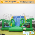 Inflatable Biggors Commercial Large Ourdoor Inflatable Recreation Kids Slide N Slip Bouncy Castle