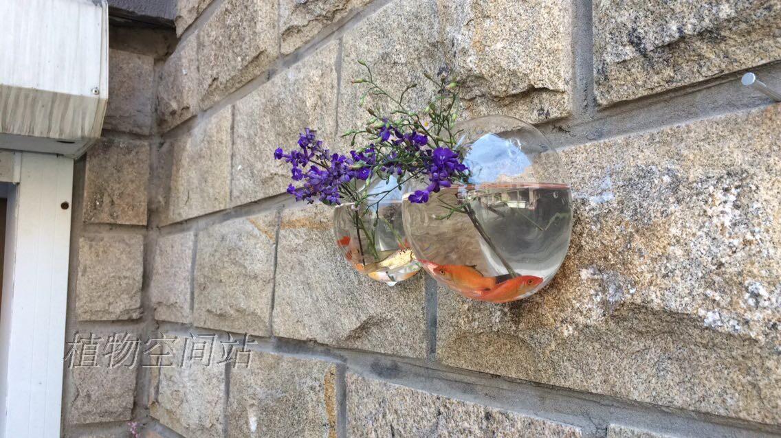 Wall Fish Tank Air Plants Wall Bubble Terrariumindoor Wall Glass