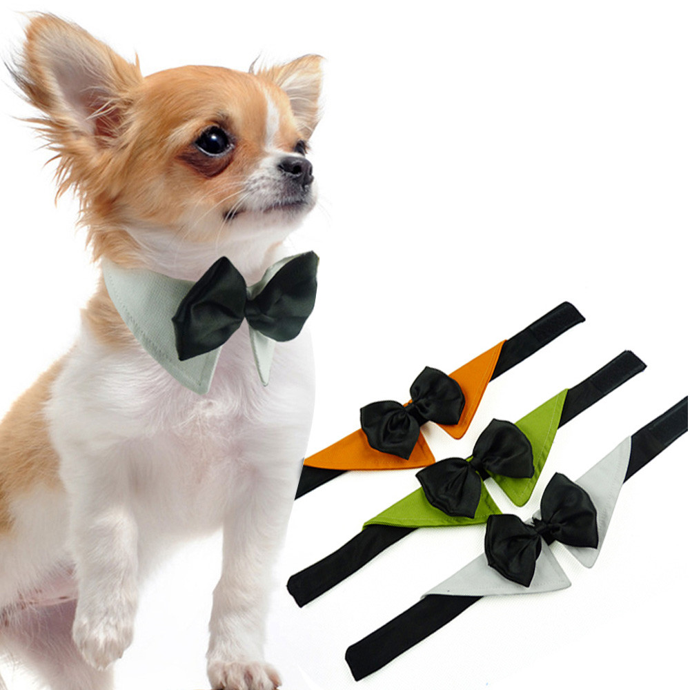 Lovely Butterfly Pet And Cat Necklace Dog Tie Pet clothes ...