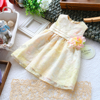 Free Shipping Retail New 2013 Spring Autumn Baby Dress Girl Sleeveless Tank One Piece Dress Summer
