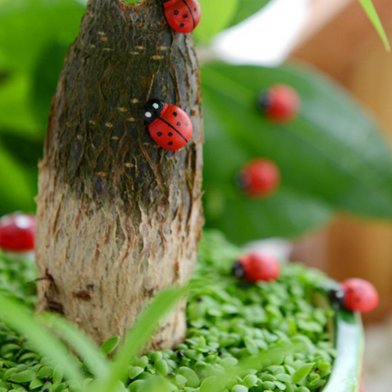 10Pcs/lady bugs/insects/beatle/miniatures/lovely animals/fairy garden gnome/moss terrarium decor/crafts/bonsai/r008