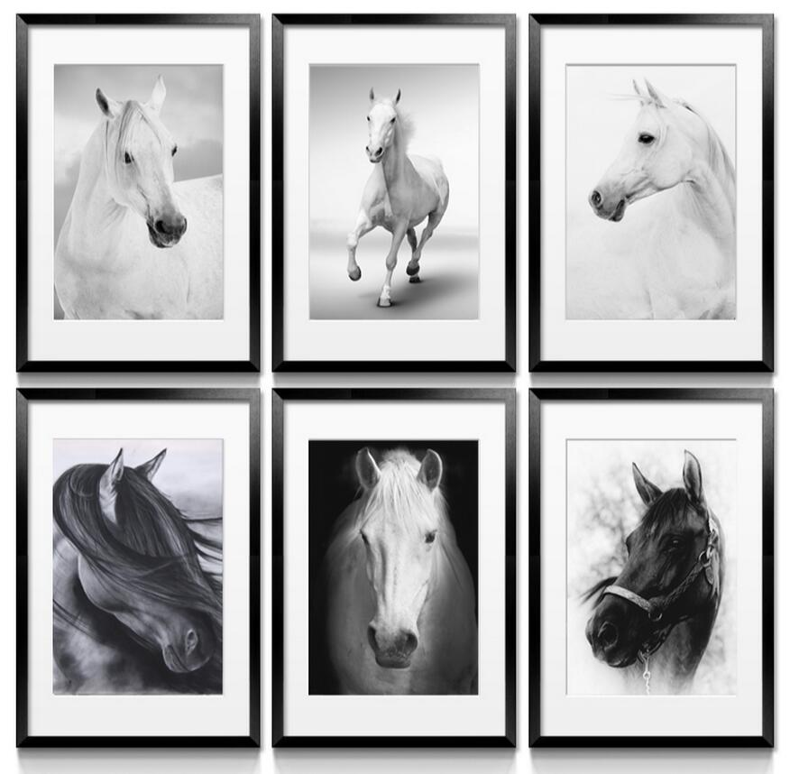 Realism print canvas animal oil painting no frame black for Black and white mural prints