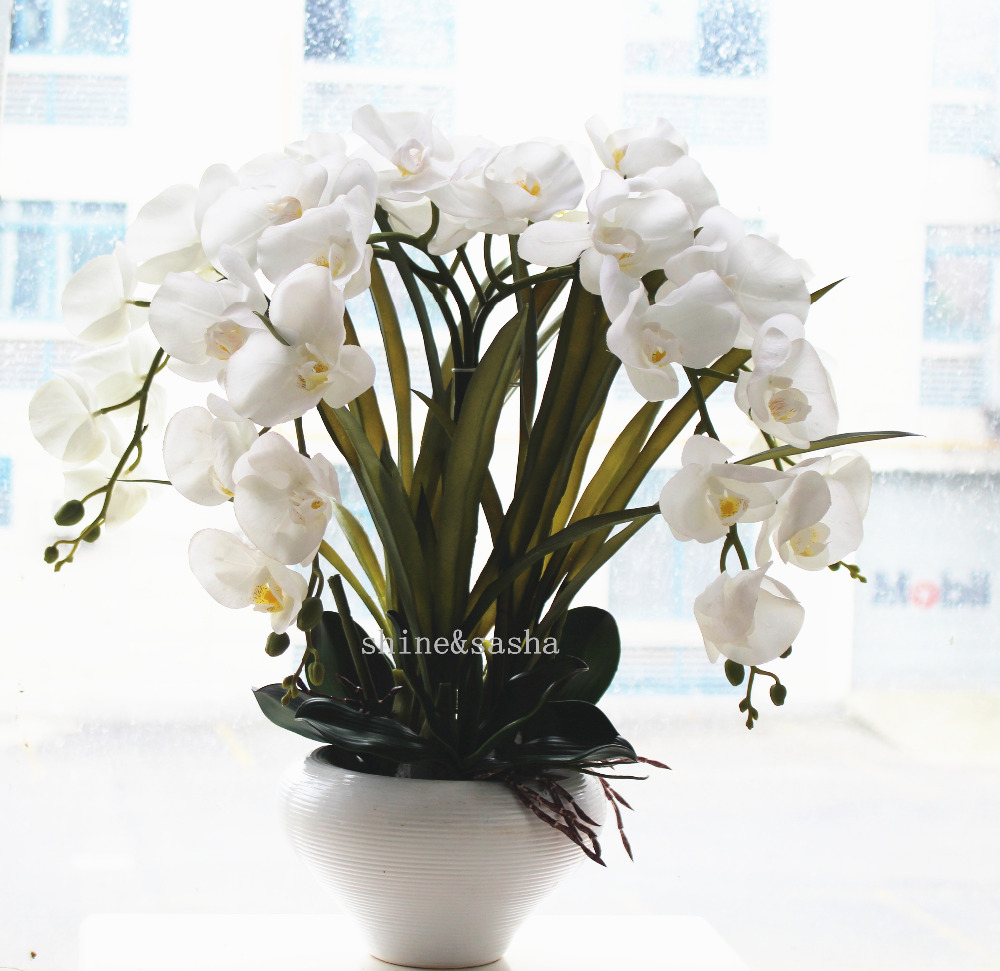 Compare prices on artificial orchid real touch online shopping 1set big size latex real touch artificial orchid flower arrangement white orchids phalaenopsis princess flower no dhlflorist Gallery