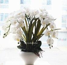 Vase Flower Arrangements Buy