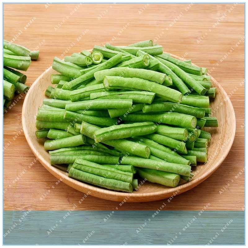 ZLKING 20 sztuk Cowpea wiosna i jesień metrów fasoli warzyw