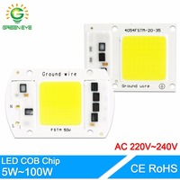 GreenEye LED COB Lamp Chip 5W 20W 30W 50W Input Smart IC Driver 220V 110V Fit