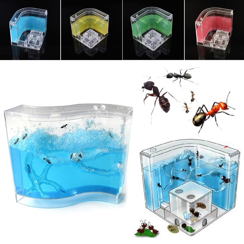 1pc Ant House Transparent Kids Insects Terrarium Small Pet Toy Educational Random Color